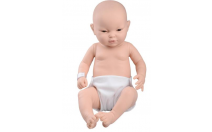 Asian Baby Care Model, female